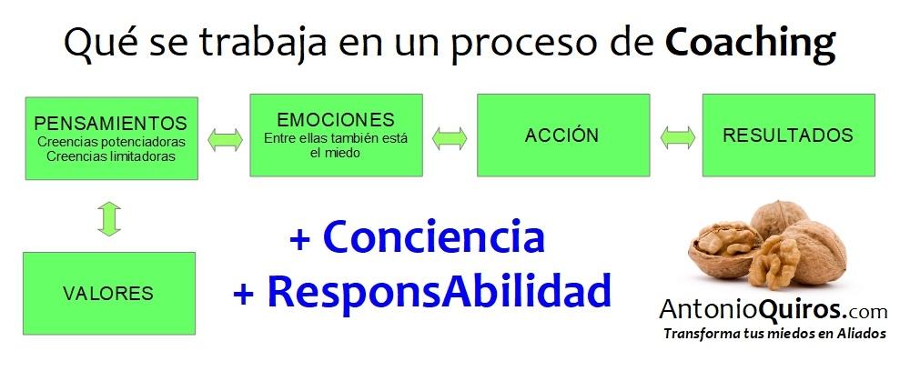 Que Se Trabaja En Un Proceso De Coaching | AntonioQuiros.com el Coach de las nueces