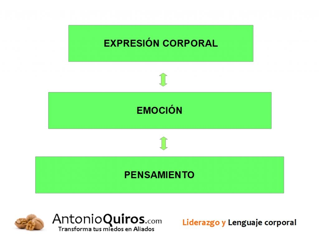 Cuerpo Emoción Pensamiento AntonioQuiros.com www.ElCoachDeLasNueces.com